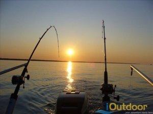 Snook-fishing-anglers