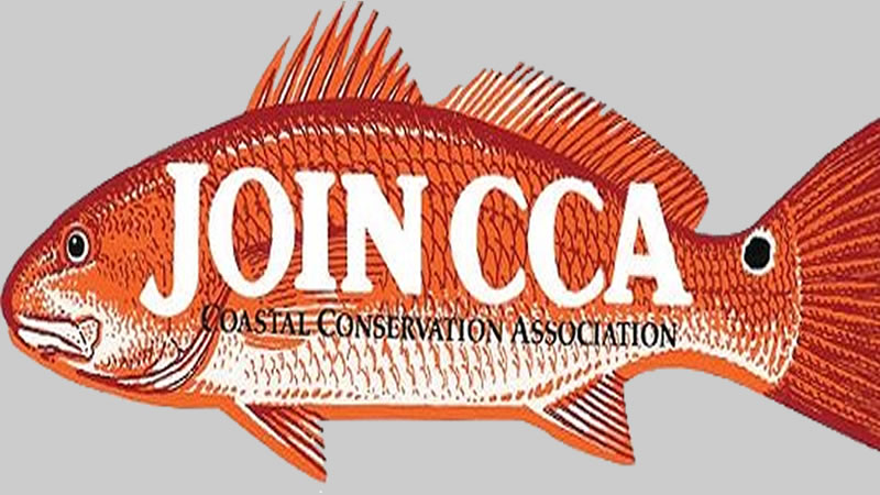 Coastal conservation activities