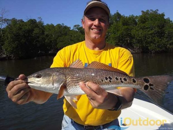 how to catch redfish on live bait - bull red fishing