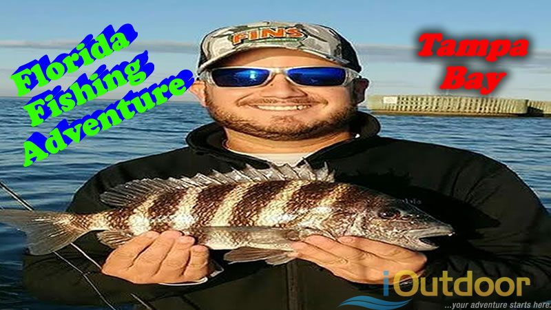 Florida Fishing Adventure For Sheepshead