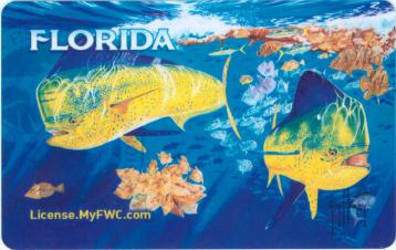 Free Florida Fishing Licenses