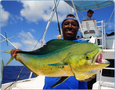 Mahi Mahi Offshore Fishing - Trolling For Dolphins: The When, What and How for Florida Fishing | iOutdoor
