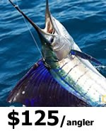 Keys Shark Fishing Charters