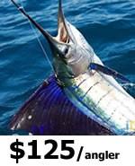 Miami Sportfishing Charters