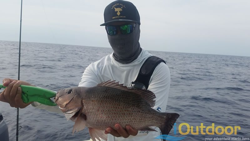 Ponce Inlet Snapper Fishing 1