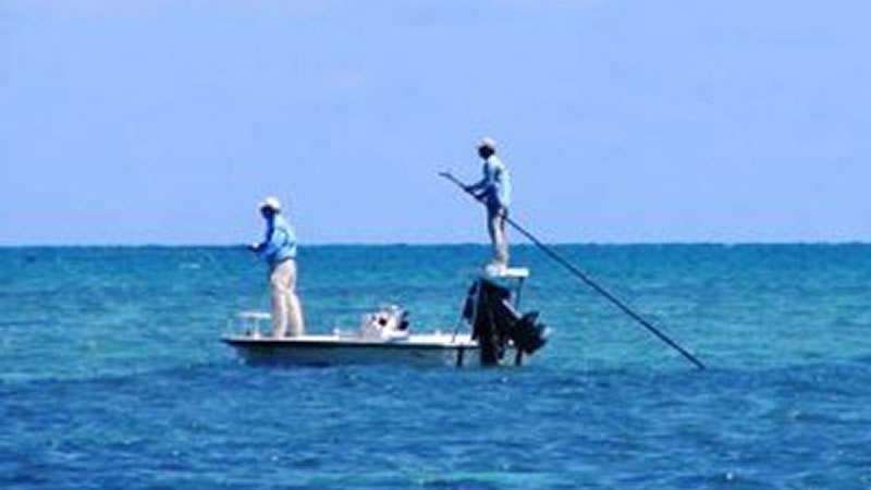 Tampa Inshore Fishing