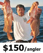 Crystal River Offshore Fishing Charters