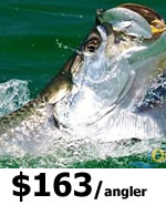 Key West Tarpon Fishing Charters