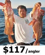 St Petersburg Offshore Fishing Charters