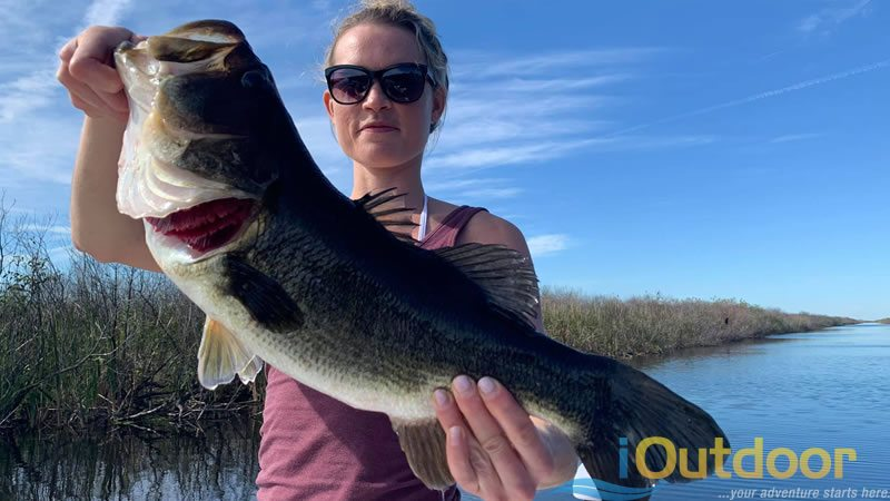 Florida Everglades Fishing Experience 3