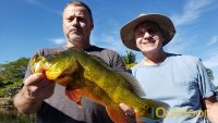 South Florida Bass Fishing 3