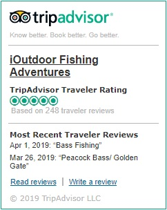 iOutdoor TripAdvisor Button