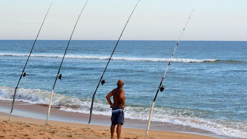 Shoreline Fishing in Florida