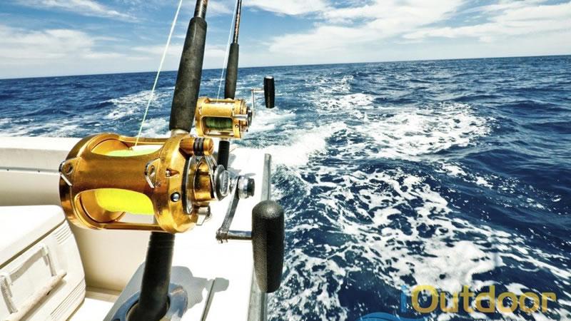 Saltwater Fishing in Florida