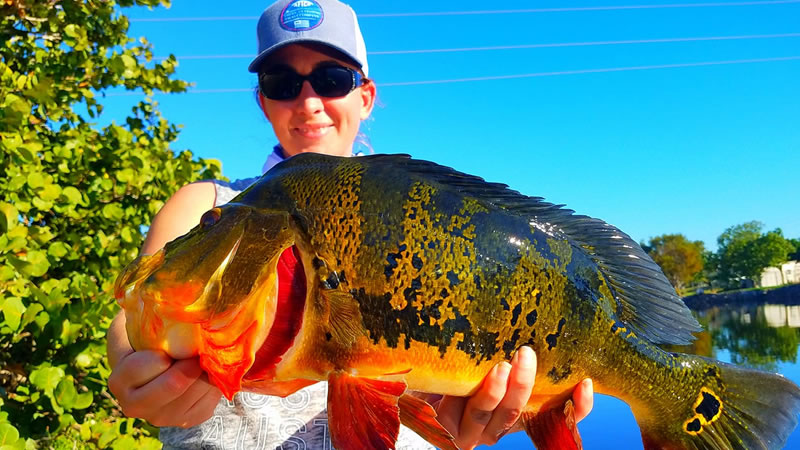 Private Fishing Charter Companies 1