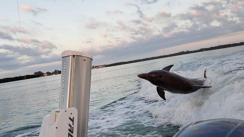 June Boca Grande Fishing 6