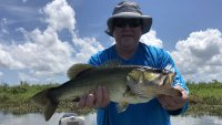 Orlando Summer Bass Fishing
