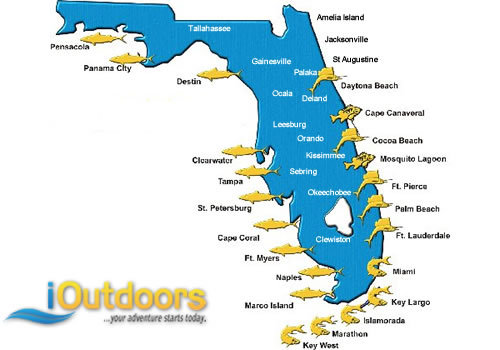 iOutdoors Florida Fishing Charters and Activities
