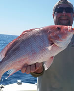Fishing Charters Estero Florida Inshore Deep Sea