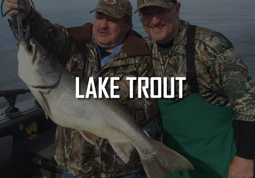 Erie PA Lake Trout Fishing Charters