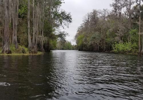 Shingle Creek Eco Tour