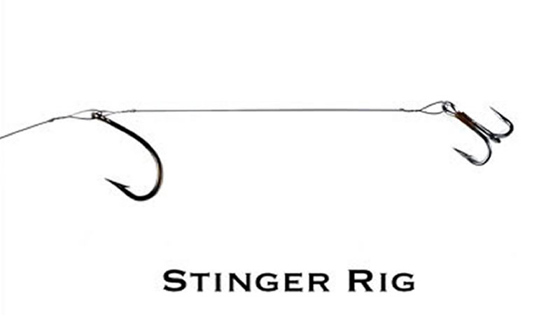 Stinger Hook Rig