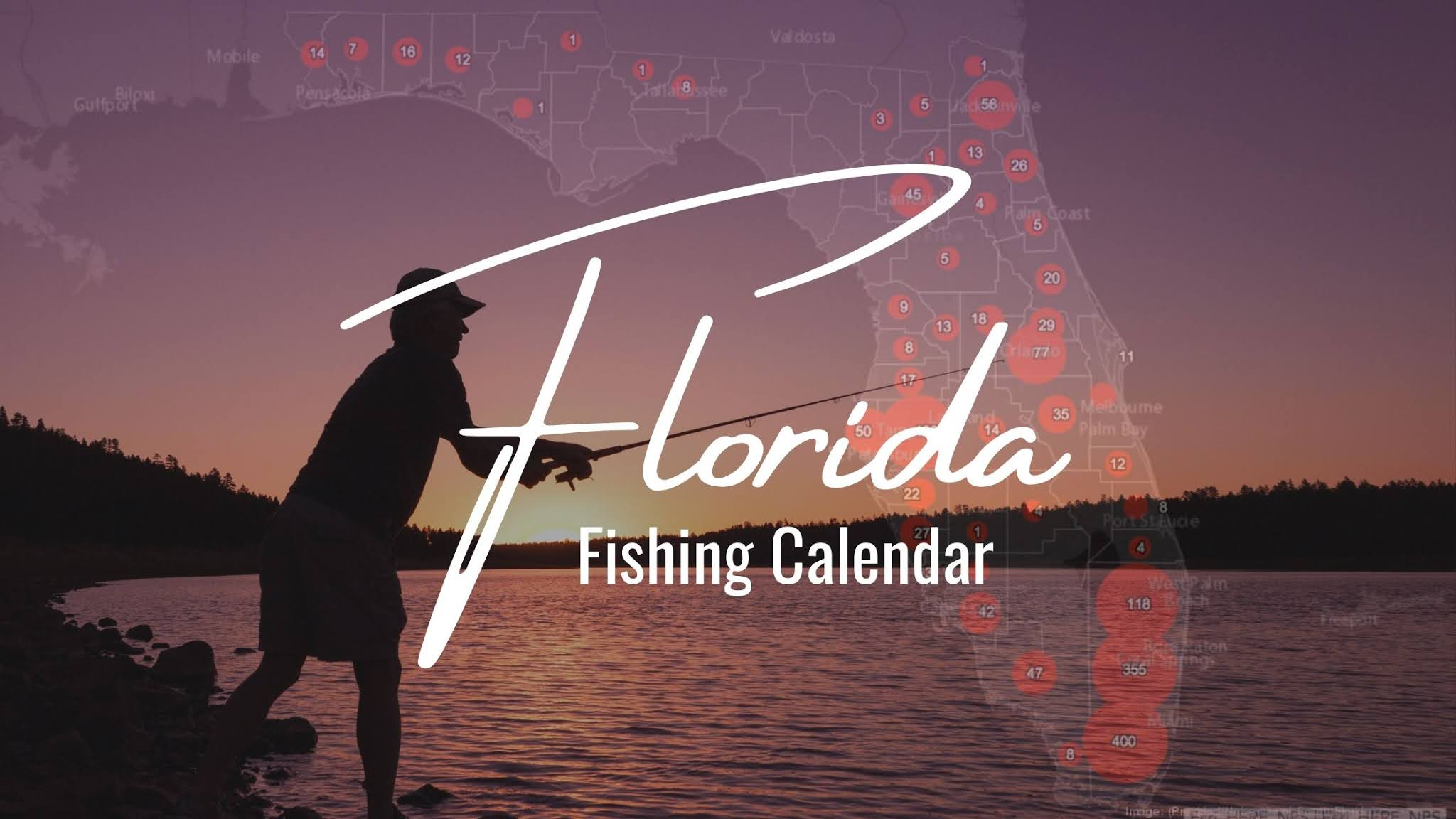 The Ultimate Florida Fishing Calendar