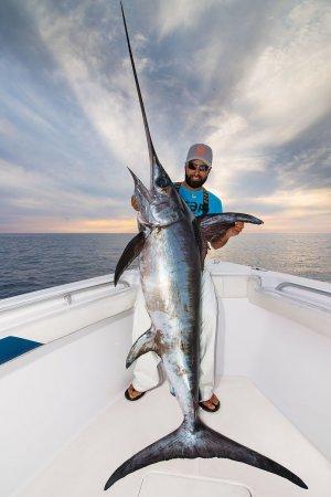 Blue Marlin Big Fish