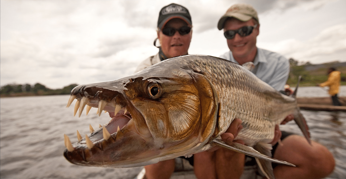 7 Hardest Fish To Catch On The Planet
