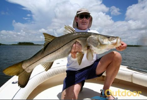 Recreational Harvest Snook Season