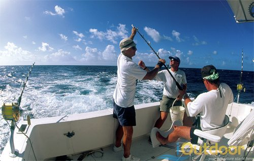 Boat Fishing Charters