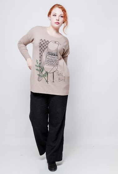 Loose sweater, soft knit, printed bird decorated with strass. The model measures 172cm, one size corresponds to 38-44