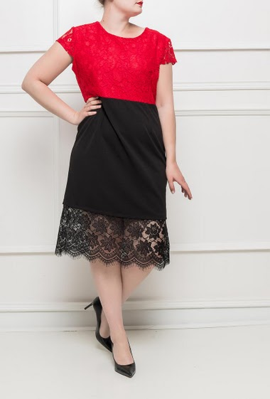 Refined lace dress, zip back closure, short sleeves, stretch fabric