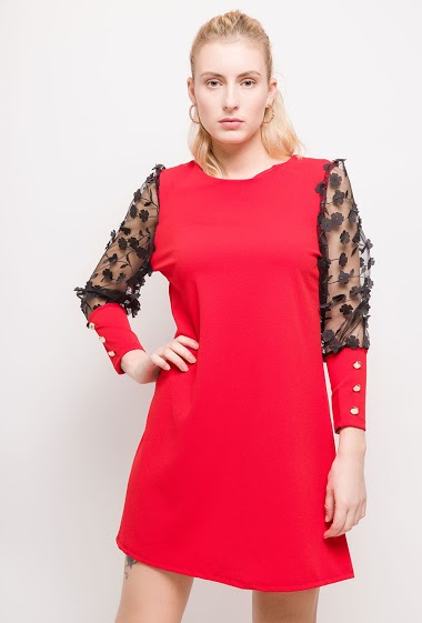 Dress with transparente sleeves