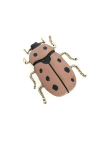 LOLILOTA broche scarabee