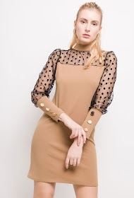WILLY Z dress with transparent sleeves