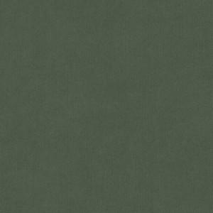 WIBALIN BUCKRAM GREEN 102cmx100MT 115gr WINTER & COMPANY