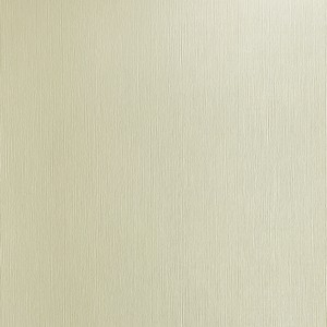 BIANCOFLASH EMBOSSED IVORY CLASSIC LINEN (LN) 250gr 32x45cm SRA3 FAVINI