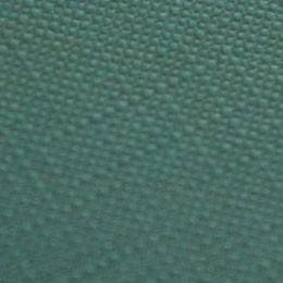 CLASSY COVERS TELATO (TT) VERDE 120gr 72x102cm