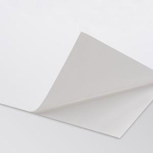 COPYSPEED BIANCA PERMANENTE SENZA RETRO-TAGLI 60gr 50x70cm