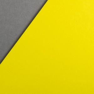 COLORPLAN FACTORY YELLOW 350gr 64x97cm GF SMITH