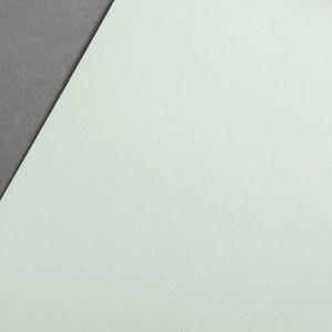 COLORPLAN PISTACHIO 270gr 21x29.7cm A4 GF SMITH