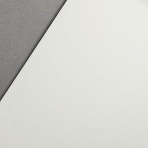 COLORPLAN VELLUM WHITE 135gr 21x29.7cm A4 GF SMITH