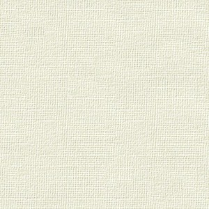 BIANCOFLASH IVORY CLASSIC LINEN (LN) AVORIO 250gr 70x100cm FAVINI