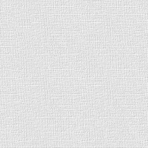 BIANCOFLASH BIANCO BRILLANTE PREMIUM CLASSIC LINEN (LN) 120gr 70x100cm FAVINI}