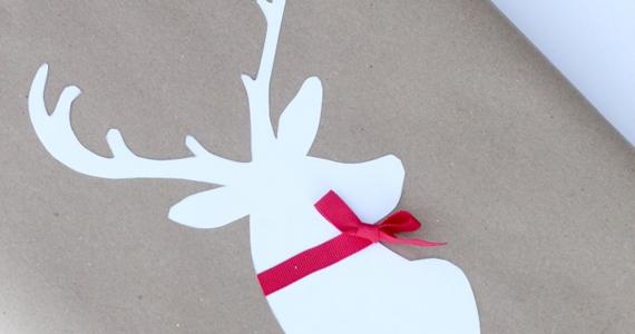 Des idées d'emballages des fêtes tout à fait originales