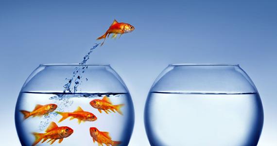 5 décisions qui vont changer votre vie