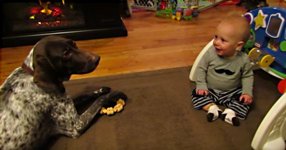 Ce bébé ne peut pas arrêter de rire quand le chien aboie sur commande