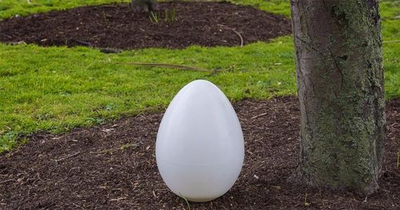 Cette capsule de sépulture biodégradable transforme votre corps en arbre