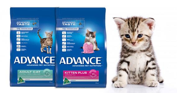 Free Advance Pet Food Samples
